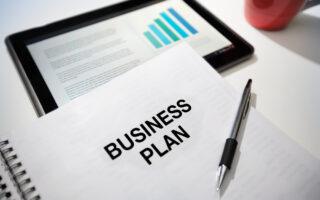 Business plan pour les nuls : avis